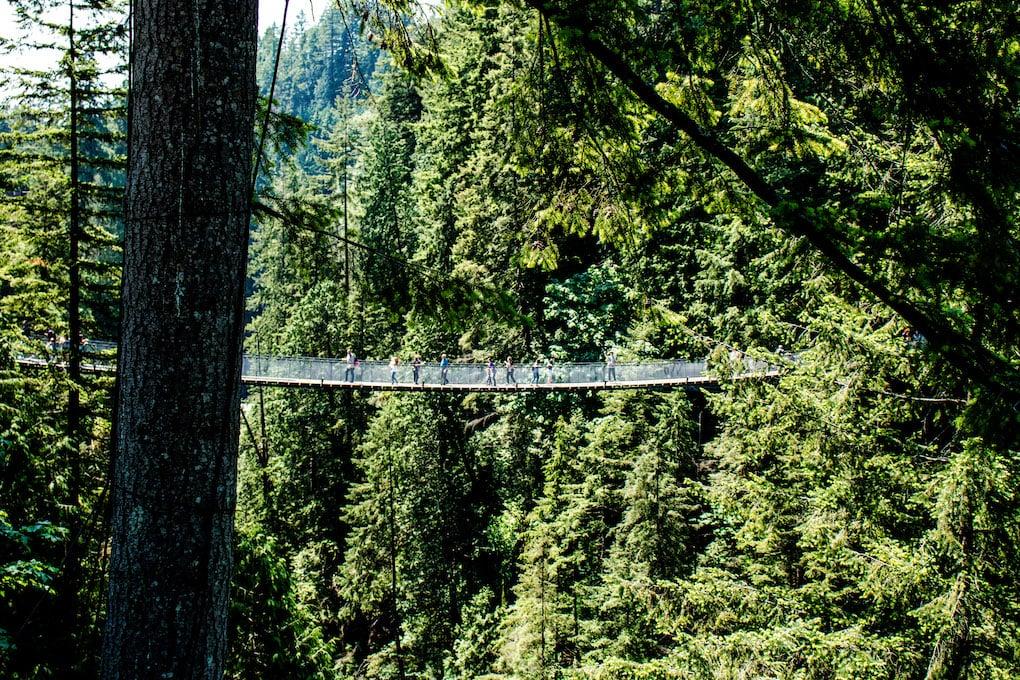 Suspension bridge in Vancouver BC